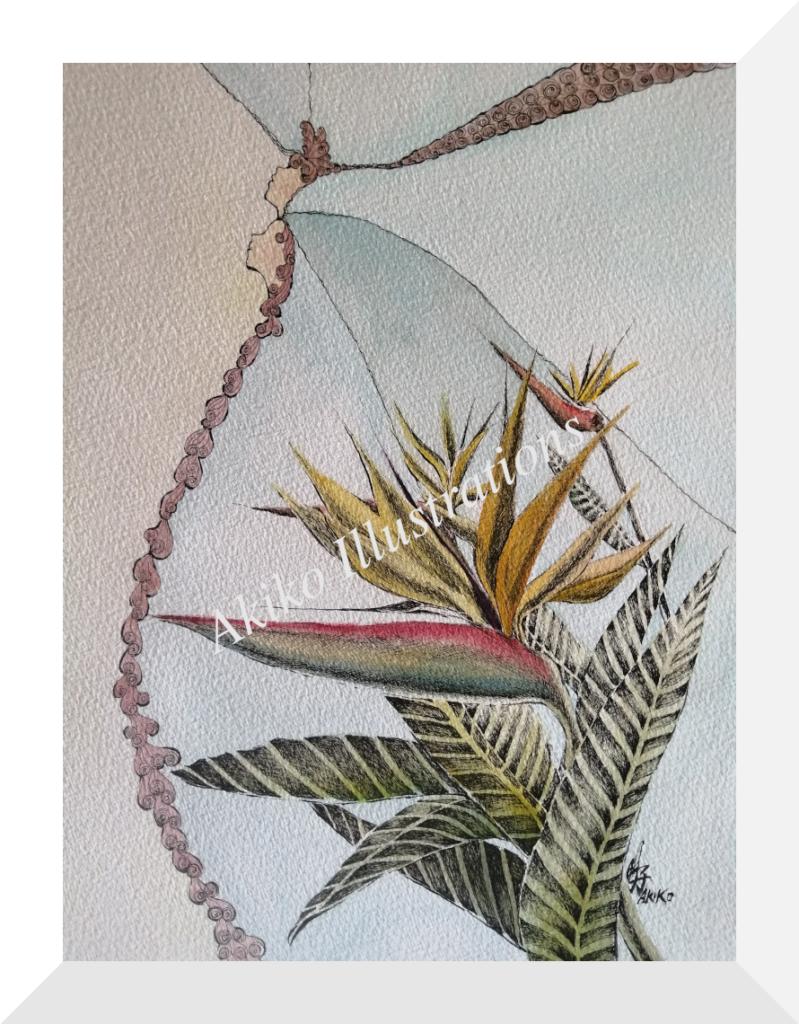 Harmoney -Bird of paradise-35cm x 26cm